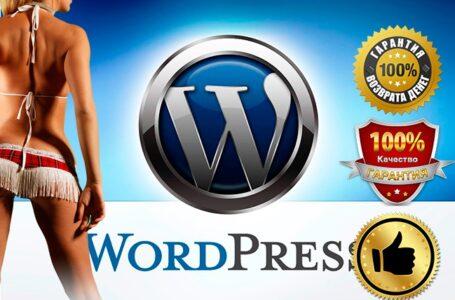 Премиум темы wordpress на русском